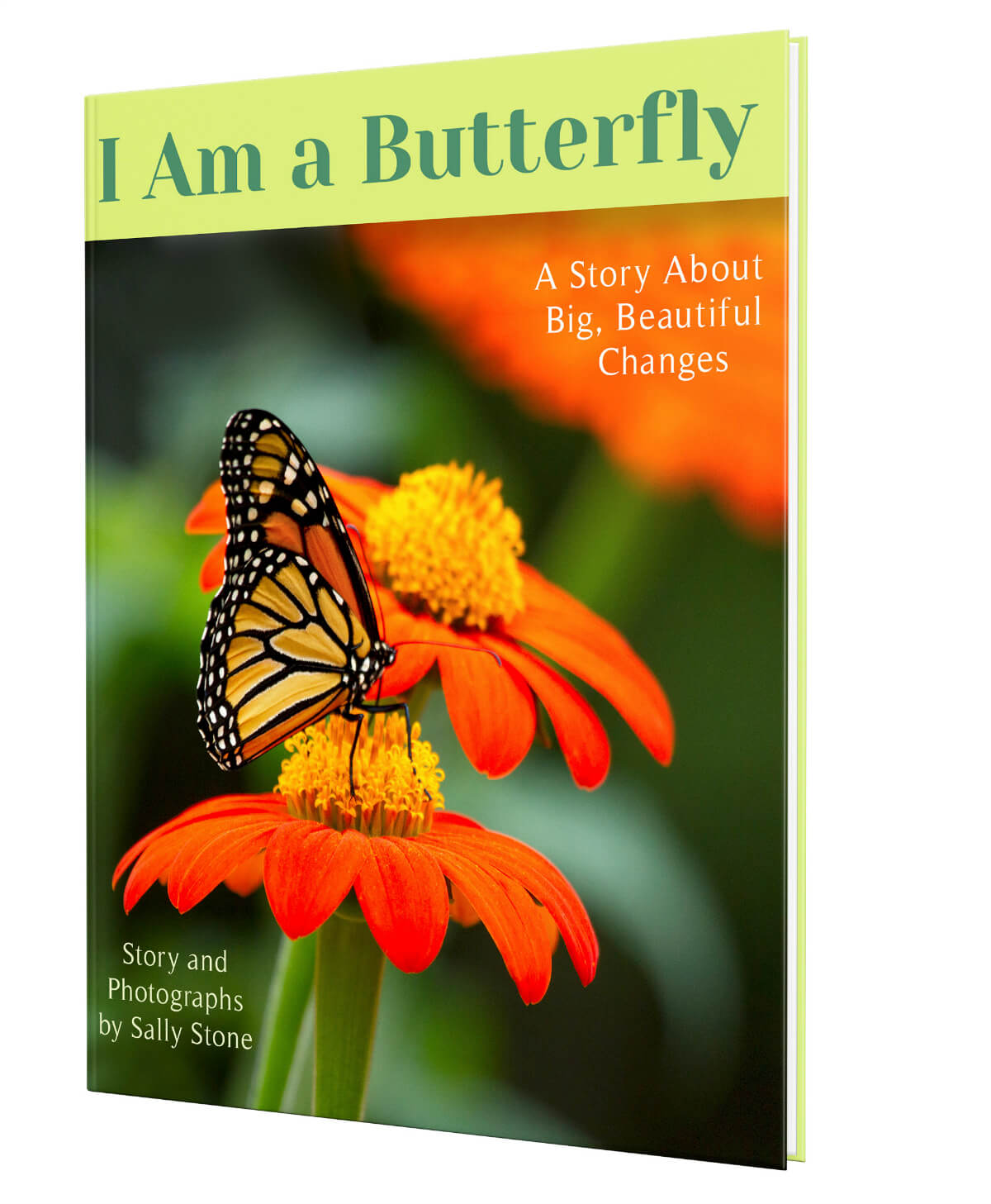 I-Am-a-Butterfly:-A-Story-About-Big-Beautiful-Changes-children's-book